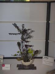 "Barberry Mums & Protea by Anna Hutchinson ""Koryu School"" (nano.maus) Tags: lauritzengardens japaneseflowerarrangement omahabotanicalsociety japaneseambiencefestival"
