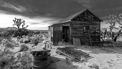 Cabin in Mojave Desert (joeqc) Tags: blackandwhite bw white black abandoned blancoynegro canon mono cabin desert forgotten mojave derelict preserve 6d ef1740f4l mnp greytones oncewashome