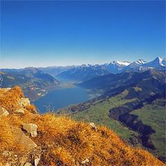 niesen (thomasw.) Tags: travel alps 120 mamiya analog alpes schweiz switzerland europa europe fuji cross suisse suiza mf bern alpen crossed niesen spiez berneroberland kandertal