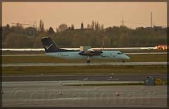 OE-LIC DHC-8-314 Dash 8 InterSky (elevationair ✈) Tags: dusseldorf airliners dehavilland dus eddf dhc8 intersky dusseldorfinternational oelic das8