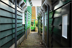 Le village de Marken, Waterland, Nederland (claude lina) Tags: claudelina nederland netherlands paysbas hollande village marken waterland