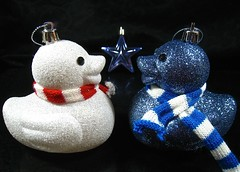 we're what? and we're going where? (muffett68 ☺ heidi ☺) Tags: christmas ducky sparkly glittery christmasornaments ansh scavenger8 glitterglittery