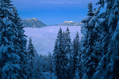 Cloud Lake (wende60) Tags: mountains clouds twilight dusk night blue lake eibsee alps winter snow frozen cold