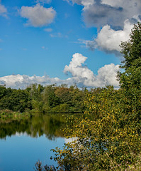 941A3535 (Orrellpenguin) Tags: orrell water park billinge winstanley
