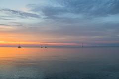Sailingboat at Sunset (Infomastern) Tags: skanr boat bt cloud hav himmal moln sailboat sea segelbt sky solnedgng sunset water
