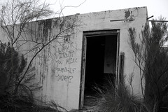 IMG_1470 (AustinBoyes) Tags: abandoned building desolate decaying dog track racetrack race dogs black white old desert phoenix graffiti destroyed landscape
