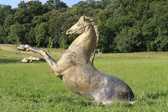 (danielebenvenuti) Tags: outdoor horse cavallo statua natura campagna country canon canon700d reflex villademidoff pratolino firenze florence toscana tuscany verde green