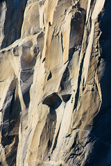 On the wall (sbisson) Tags: yosemite california nationalpark sierras mountains autumn fall rocks wildlife beauty landscapes elcapitan slabs faces rock wall granite climbers