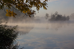 I can see clearly now () Tags: morning 700d canon nature autumn moments fall fog soul tree lake lakehouse