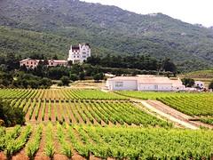050607 0410 Chateau Valmy1 (Jaap~Verbeek) Tags: wijn chteau nikoncoolpix8700 vacantie frankrijk pyrenesorientales