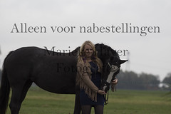 15 oktober 2016-89 (MZorro4) Tags: mariekehaverfotografie oudesluis schagen paardenfotografie portretfotos rijden wwwmariekehaverfotografienlpaarden