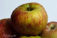 Manzanas (J.Gargallo) Tags: manzanas fruta apple apples fruit bodegn macro canon450d canon eos eos450d 450d tokina tokina100mmf28atxprod