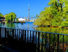 Toronto skyline from Centre Island (peggyhr) Tags: peggyhr skyline lake trees hff fence dsc02425a toronto ontario canada cntower reflections thegalaxy thelooklevel1red super~sixbronzestage1 level1peaceawards frameit~level01~ niceasitgets~level1 level1photographyforrecreation thelooklevel2yellowaddphotos thelooklevel3orange thelooklevel4purple thelooklevel5green