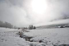 Au col du Bayard, 05 (RarOiseau) Tags: neige hiver nuage brouillard lumire coldubayard gap hautesalpes