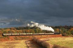 Severn Valley Railway Gala double header 2016 (Keith Wilko) Tags: svr severnvalleyrailway steamtrain steam steamlocomotives steamengine uksteamlocomotives locomotive loco svrlocomotives severnvalleysteam sevenvalleyrailway 7812 4566 loco4566 4566loco loco7812 erlestokemanor 7812erlestokemanor doubleheaded 7812and4566 worcestershire bewdley kidderminster