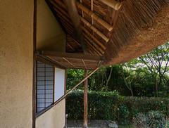 Lines on a tea house (Tim Ravenscroft) Tags: tea house thatch architecture shoji konpukuji kyoto japan