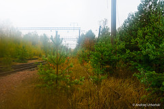 DSC_1584 (andrzej56urbanski) Tags: chernobyl czaes ukraine pripyat prypeć prypyat kyivskaoblast ua