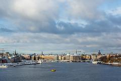 10112016-IMG_9100.jpg (thehikingzebra) Tags: neige stockholm sude