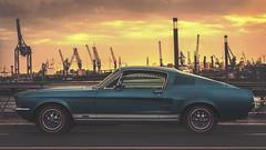 Ford Mustang (digital_underground) Tags: hamburg hafencity freihafen deutschland sunset musteng ford gt blue yellow gold bridge oldtimer germany