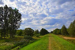 paths and roads (JoannaRB2009) Tags: path road landscape view nature green grass meadow tree trees sky clouds cloudy blue summer rzeka river warta valley dolina dolinawarty dzkie lodzkie polska poland weather