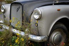 Taxi Out of Order (G_Albrecht) Tags: auto marode oldtimer verkehr vermerk zustand