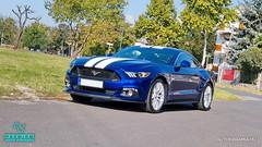 Mustang_04 (holloszsolt) Tags: ford mustang 50 outdoor vehicle sport car nanolex si3 hd autokeramia