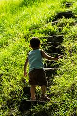 jo sol (mr. txutis) Tags: grass hierba nio child infancia solo alone nikon tamron navarra nafarroa euskalherria stair escalera