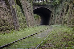 (letchbo) Tags: nature derelict traintracks derp trespass nikon urbanexploring urbex abandoned paris