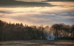 NB-15.jpg (neil.bulman) Tags: countryside longshawestate peakdistrict nature nationalpark derbyshire longshaw fog cloudinversion inversion cloud nationaltrust sheffield england unitedkingdom gb