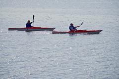 Kayaking The Ottawa River In Montebello (Jeannot7) Tags: montebello ottawariver kayaks québec