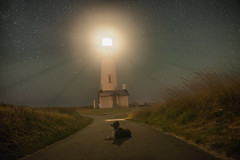 Yaquina Head Lighthouse (Justin Knott) Tags: dog lighthouse oregon collie border newport