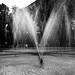 Roma Norte Fountain (2)