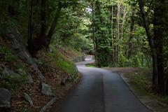 (Astralh) Tags: road ticino strada bend swiss natura curve svizzera sementina