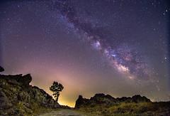 Milky Way rises over the rock mountain (Vagelis Pikoulas) Tags: longexposure summer sky tree rock night canon way stars landscape star rocks europe tokina greece galaxy milky milkyway 6d 2015 vilia 1116mm