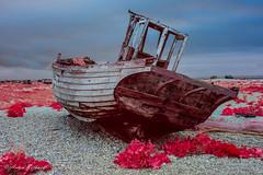 Alien shores (JustAnotherCanonOperator (JACO)) Tags: beach boat kodak infrared dungeness aerochrome