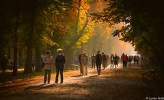 Cluj-Napoca Central Park (Lucian Nuță) Tags: park autumn sunset fall central romania cluj napoca clujnapoca