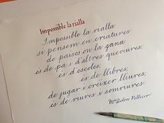 Impossible la rialla, poema de M Dolors Pellicer (xelo garrigs) Tags: poetry calligraphy caligrafa m poema dolors pellicer calligrafia