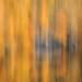 """Sur les pas de Courbet, une envie de peindre avec la lumière • <a style=""""font-size:0.8em;"""" href=""""http://www.flickr.com/photos/53131727@N04/22512504802/"""" target=""""_blank"""">View on Flickr</a>"""