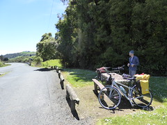 Roadside picnic lunch en route to Taumarunui