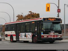 Toronto Transit Commission #7978 (vb5215's Transportation Gallery) Tags: toronto ttc 2006 transit orion commission vii
