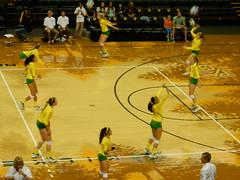 University of Oregon vs Cal (LarrynJill) Tags: college sports oregon athletics university ducks competition eugene uo volleyball mattarena