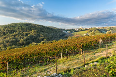Tuscan Landscape III, Castellina in Chianti (chasingthelight10) Tags: travel italy photography landscapes europe events cityscapes places pisa tuscany leaningtowerofpisa