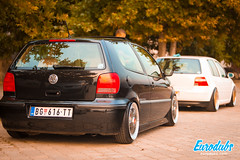"MK4 & Polo 6N2 • <a style=""font-size:0.8em;"" href=""http://www.flickr.com/photos/54523206@N03/23036802290/"" target=""_blank"">View on Flickr</a>"