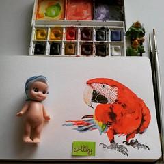 #parrot #loro #cuteparrot #moleskine #art_worldly #art___share #artjournal #watercolours #waterblog #sonnyangel #birdportrait #winsorandnewton #sketchdaily #acuarelas #art_antonio #sketch (Milagritos9) Tags: square squareformat ludwig acuarelas artistjournal sonnyangel birdillustration parrotportrait iphoneography birdjournal instagramapp uploaded:by=instagram moleskinewatercolours retratoloro onedrawingperday dolphindoll