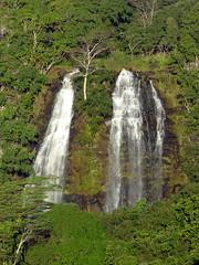Wailua River State Park - 'Opaeka'a Falls (Kwong Yee Cheng) Tags: hawaii kauai opaekaafalls wailuariverstatepark