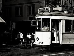 (mgkm photography) Tags: urban blackandwhite bw blancoynegro portugal monochrome 50mm calle lisboa lisbon streetphotography gimp rua pretoebranco blackandwhitephotography streetshot urbanphotography shotwell lisboetas fotografiaurbana blackwhitephotos nikonphotography opensourcephotography ilustrarportugal d7000 europeanphotography streettogs lisbonarua