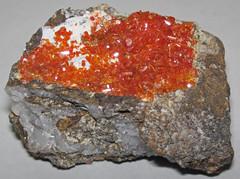 Crocoite (Adelaide Mine, Zeehan District, Tasmania) 2 (James St. John) Tags: mine district minerals mineral tasmania adelaide dundas lead crocoite chromate zeehan chromates