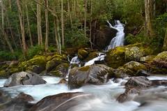 Big Creek and Mouse Creek Falls (esywlkr) Tags: water waterfall nc northcarolina hike trail cascade smokies bigcreek wnc greatsmokymountainsnationalpark gsmnp mousecreekfalls