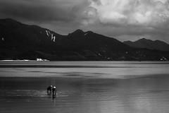 Đảo Quan Lạn, Vietnam. 2015.
