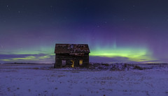 Northern Lights (Peter Stahl Photography) Tags: winter snow canada night stars lights alberta northernlights auroraborealis borealis